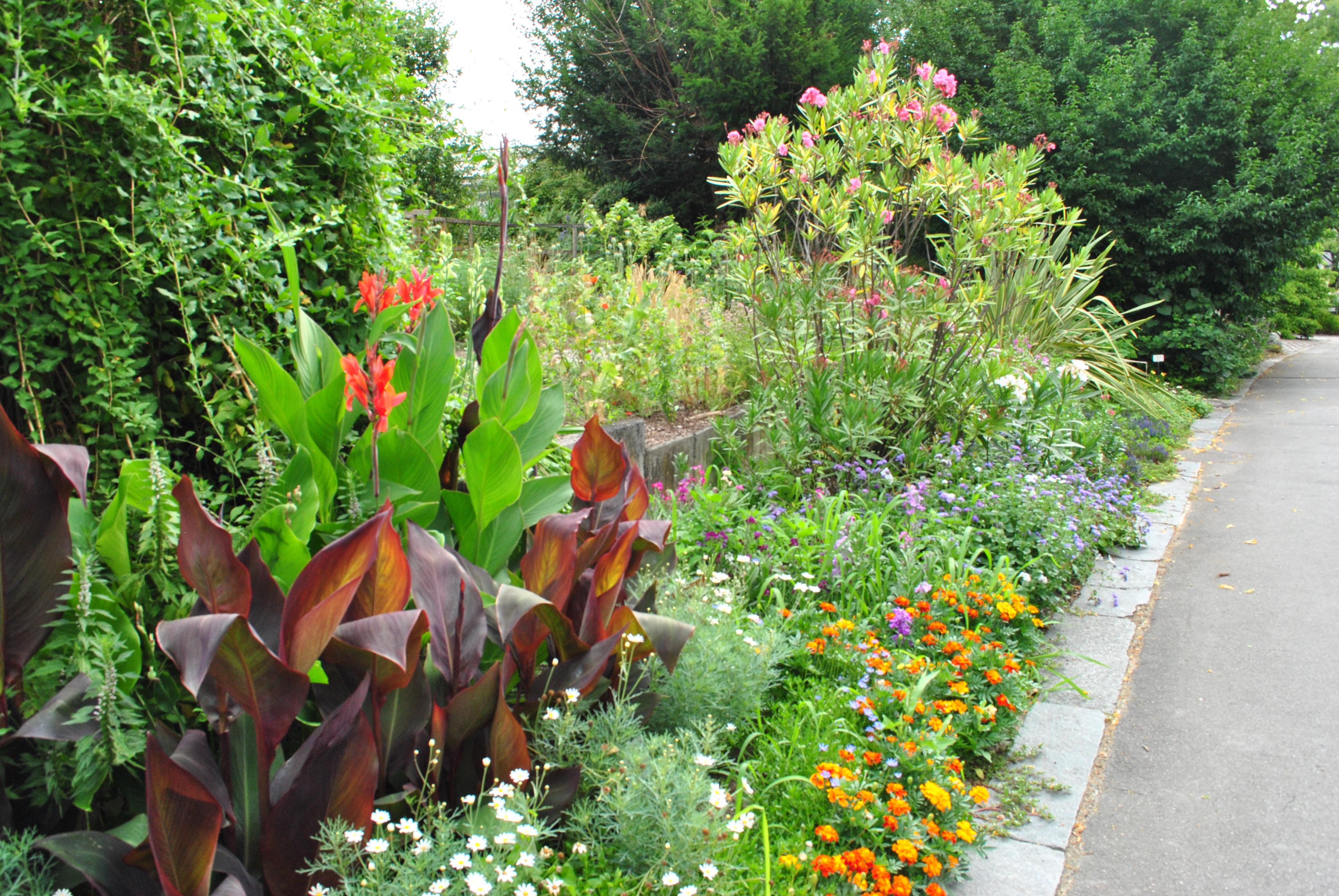 university of innsbruck botanical garden